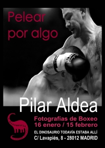 Cartel Expo Dino Boxeo iPhone